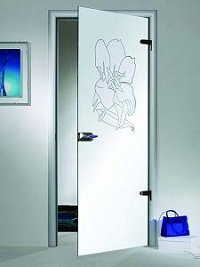 Стеклянные двери 58 фото межкомнатные маятниковые двери и перегородки из матового закаленного стекла